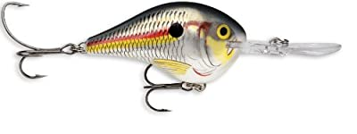 Rapala DT Series Lure (Shad, 5/16 oz.) from South Bend
