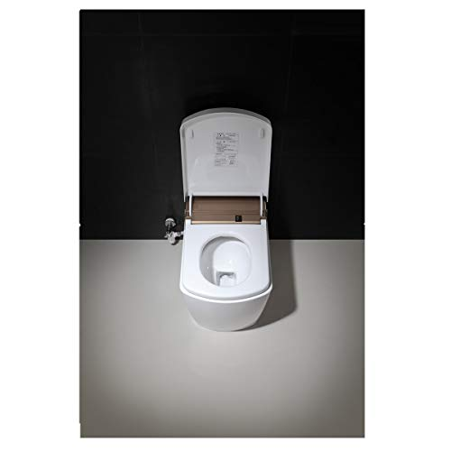 SL610-4 Radar Detect Smart One-Piece Siphon Toilet Set With Auto-open,Auto-close,Washer Heating,Cushion Heating