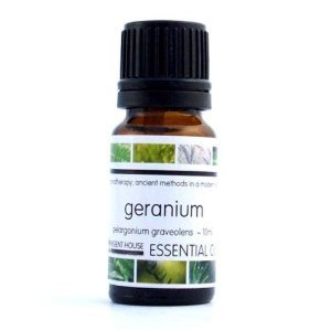Geranium Essential Oil - Pelargonium Graveolens (10ml) by Regent House