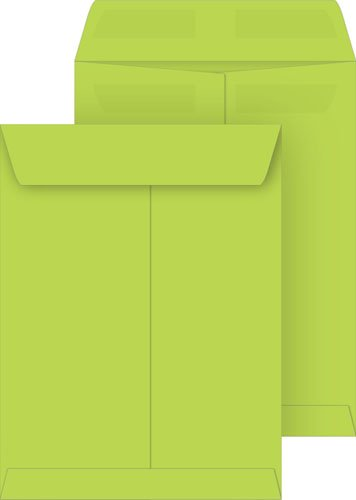 Lime 9x12 Catalog Envelopes, Press & Seal, 50-Pack by Coordinated Systems & Supplies
