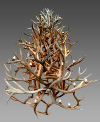 - Real Antler Elk / Mule Deer / Whitetail 4-Tier Chandelier Light
