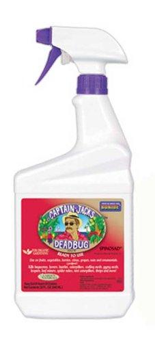 (Captain Jack's Dead Bug Brew, RTU Quart)