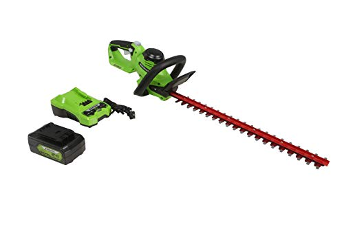 Greenworks 24V 22 Laser