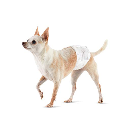 Amazon Basics Male Dog Wrap, Disposable Diapers – Pack of 30