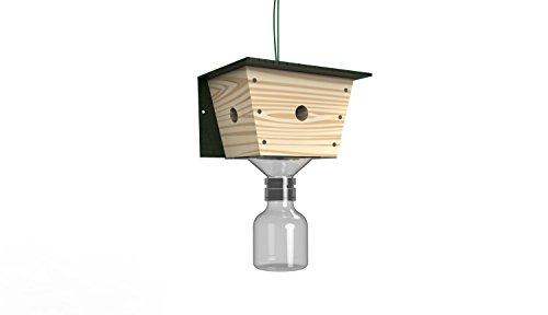 best-bee-trap-carpenter-bee-trap