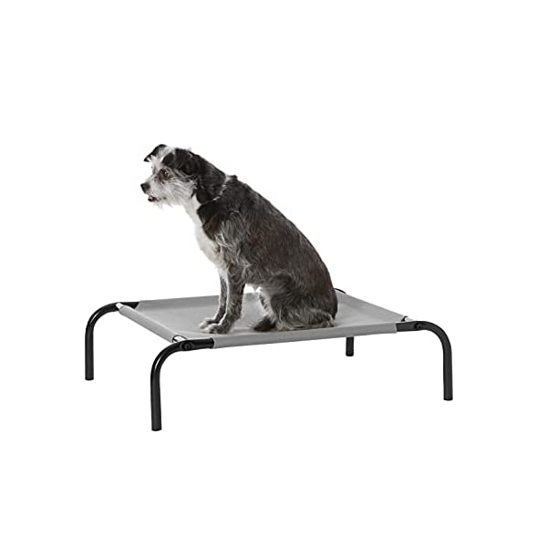 31Toktjg8RS Amazon Basics – Erhöhtes Haustierbett mit kühlender Wirkung, Gr. M, 110 x 65 x 19 cm, Grün