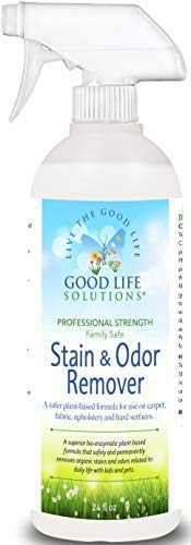 Stain Remover and Odor Eliminator - The Best ECO-FRIENDLY Professional Strength Toddler, Dog and Cat Urine Cleaner - A Safer Plant-Based Enzyme Formula for Carpet Fabric Upholstery & Hard Floors. 24oz (Tough Removal Stain Carpet)