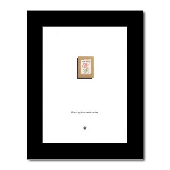 Tom Petty - Wildflower Matted Mini Poster