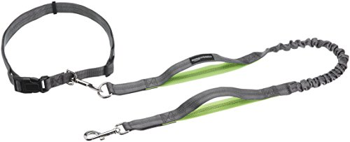 (AmazonBasics Dual Handle Bungee Dog Leash - 3-Foot, Green)