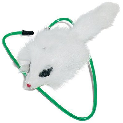 Ethical Products 2427 A Door Able Cat Toy - Quantity 12 - A Door Able Cat Toy