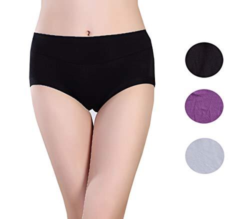 Lashapear Women's Underwear Super Soft Modal Stretchy Plus Size Brief Panties S-XXL, Color2, X-Large