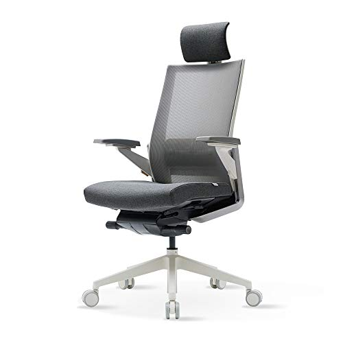 SIDIZ T80 Ergonomic Home Desk Chair (T800HLDA): Ultimate Sync Mechanism, Mesh Back with Lumbar Support & Headrest, 3-Way Adjustable Arms, Adjustable Seat Slide & Slope (Light Grey)