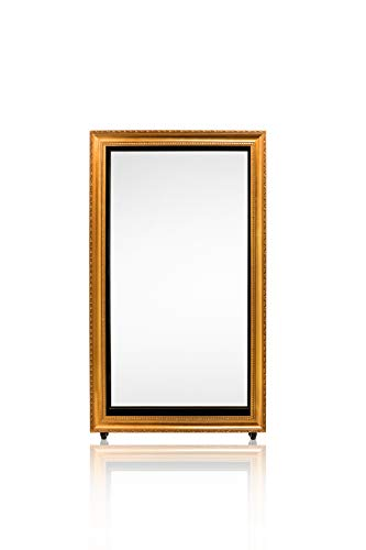 - HIFOTO Magic Mirror Photo Booth, Wedding Birthday Party Hotel Museums Portable Digital Media Player, HD 1080p Touch Screen with Canon Camera Photography Backdrop Stand(55 INCH)