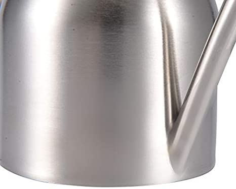 DECMAY Stainless Steel Watering Can Pot Modern Style For House Plant Watering with Comfort Handle Long Spout Strong Body for in//Outdoor Silver//1000ml