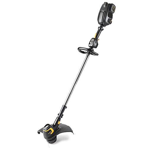 - Poulan Pro PRST15i, 15 in. 58-Volt Cordless Straight Shaft String Trimmer (Battery Included)