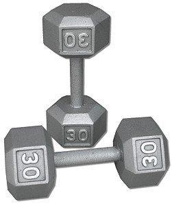 Paar 30 lb. Gusseisen Hex Hanteln von Ader Sports