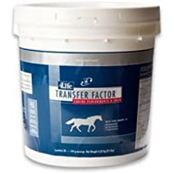 Transfer Factor Equine Performance and Show - 30 Servings (144 grams each)
