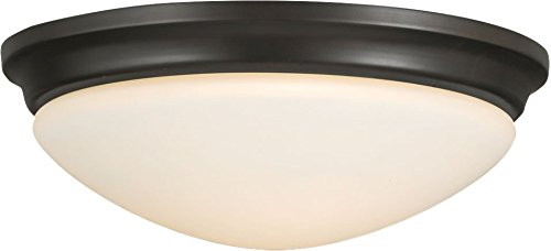 Murray Feiss Bronze Ceiling Light - Feiss FM272ORB Barrington Glass Flush Mount Ceiling Lighting, Bronze, 2-Light (14