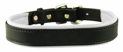 Perri's Padded Leather Dog Collar, Black/White, Small/3/4