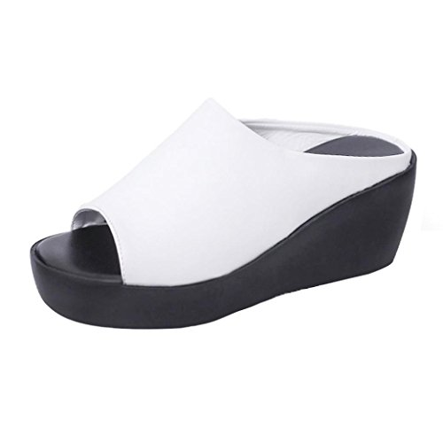 The New Fish Mouth Rome Men's Sandals(White) - 5