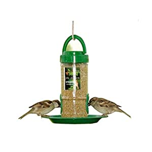 Amijivdaya Small Bird Feeder with Holding Handle, Transparent, Green