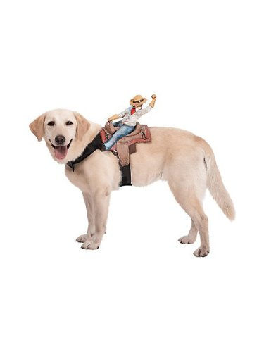 Paper Magic Group Dog Riders Cowboy Pet Costume, My Pet Supplies