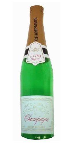 Amazon.com: Henbrandt inflable gigante Botella de champaña ...