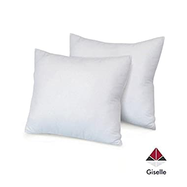 Giselle Hotel Quality Pack of 2 - Hypoallergenic Down Alternative Big Euro Pillows (28 Inch x 28 Inch)