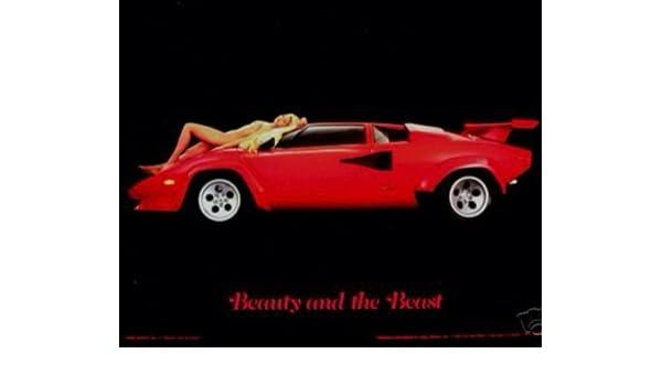 Amazon Com Lamborghini Countach Beauty And The Beast Car Poster