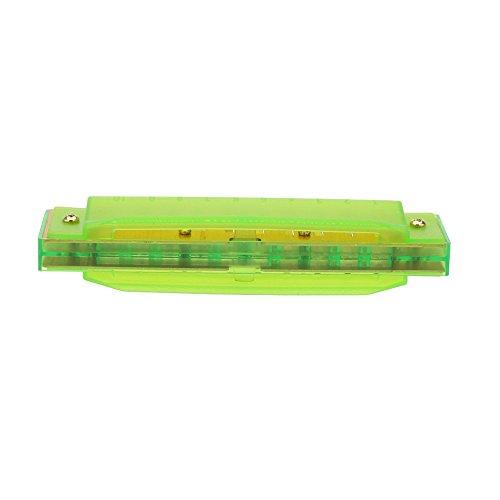 Armonica diatonica 10 agujeros Arpa azul organo bucal C Tecla Instrumento de cana con caja Juguete musical de nino Verde fluorescente Armonica TOOGOO R