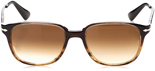 Brownriped Adulto Brown Brown Unisex Gafas Persol de Sol Marrón WwHxO0nqI4