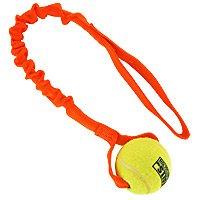 Clean Run Bene's Bungee Ball ()