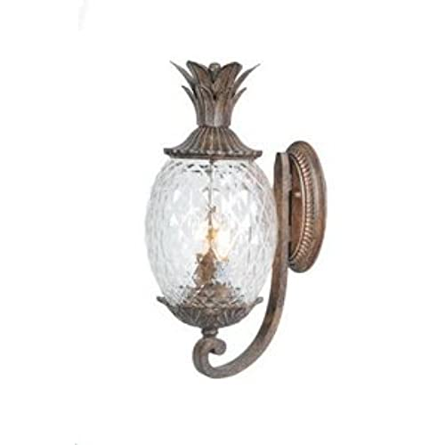 Acclaim 7501BC Lanai Collection 2-Light Wall Mount Outdoor Light Fixture,  Black Coral - Pineapple Outdoor Decor: Amazon.com