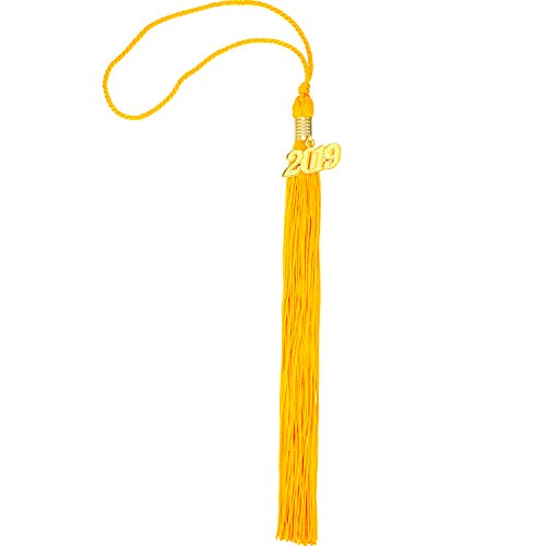 TecUnite Graduation Tassel Academic Graduation Tassel with 2019 Year Charm Ceremonies Accessories for Graduates (Gold)