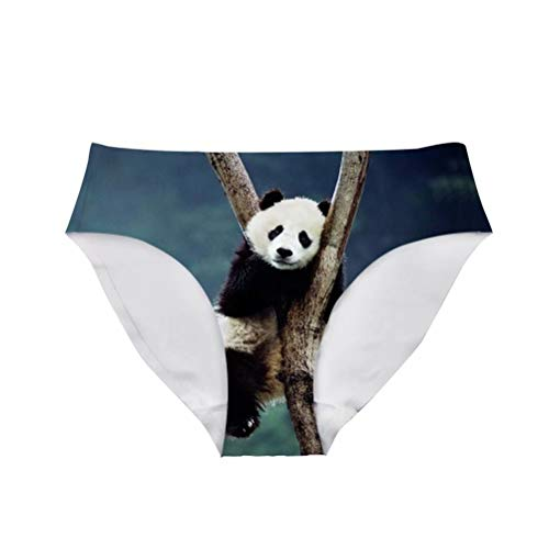 Allcute Cute Chinese Panda Sexy Breathable Underwear Hipster Panty Briefs for Gifts ()