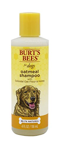Burt's Bees for Dogs Natural Oatmeal Shampoo with Colloidal Oat Flour and Honey| Oatmeal Dog Shampoo, 4 Ounces