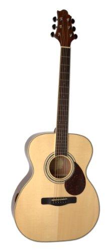 Greg Bennett Acoustic Guitars - 9
