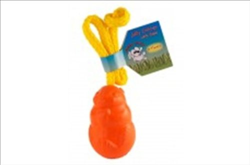 Jolly Pets 881013 Joly Floating Critter W-Rope