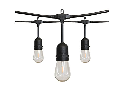 Alpan 36' Edison-Style LED String Lights by Alpan