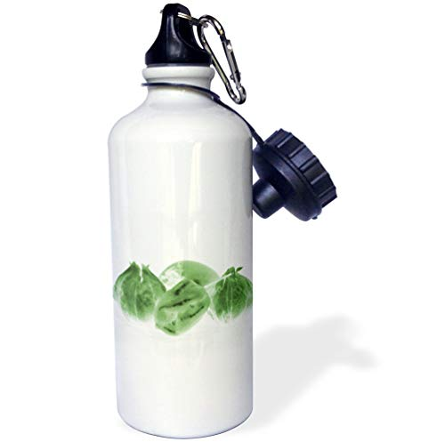 3dRose Susans Zoo Crew Flower - Invert tomatillo Green Toned w Persimmon and Pepper - 21 oz Sports Water Bottle (wb_194408_1)