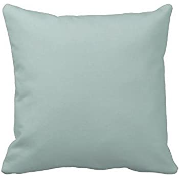 Home Decor Personalized Retro Art Print Seafoam Blue Sea Foam Green Color Pillow Cover Cushion Case Pillow Cover 16x16 Two Sides