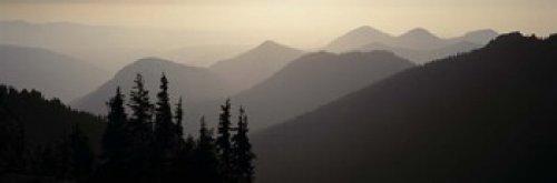 Mount Rainier National Park Wa USA Poster Print