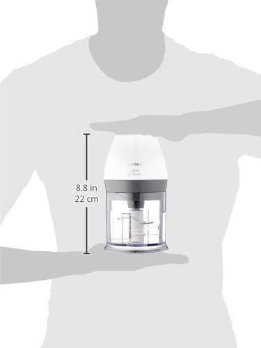 Grundig CH 6280 w - Batidora, 450 W, blanco: Amazon.es: Hogar