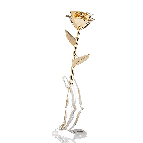 ZJchao Long Stem Dipped 24k Gold Rose in Gift Box with Clear Display Stand (Golden)