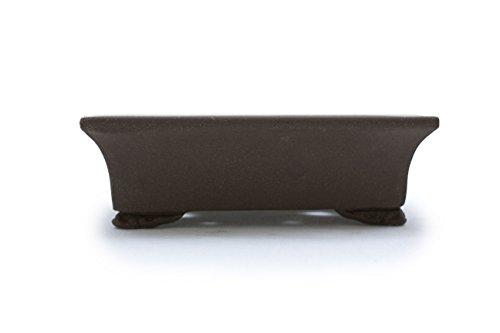 Bonsai Tree Pot 6 Inch or 12 Inch Unglazed Oval shape