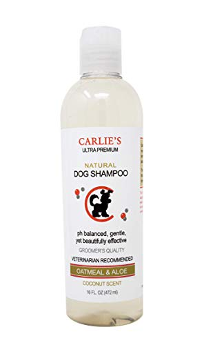 Scoochie Pets Dog Shampoo & Conditioner| Skin Soothing, Ph Balanced| Deodorizing, Moisturizing & Detangling Action| Hypoallergenic & Veterinarian Recommended Pet Grooming (Coconut - Oatmeal & Aloe)