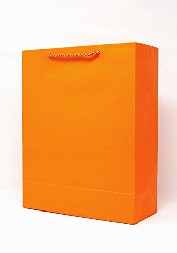 Singular Metallizing Party Gift Halloween Paper Bags Medium Size (Set of 12) (Vertical (10