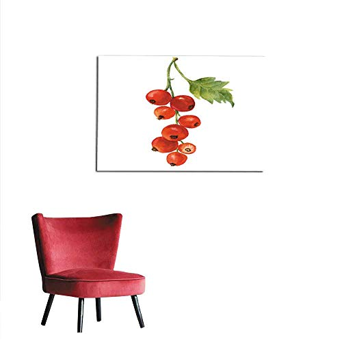 - Photographic Wallpaper Watercolor red currant with leaf Hand drawn artistic illustration on white background For design textile and background Realistic botanical illustration mural 28