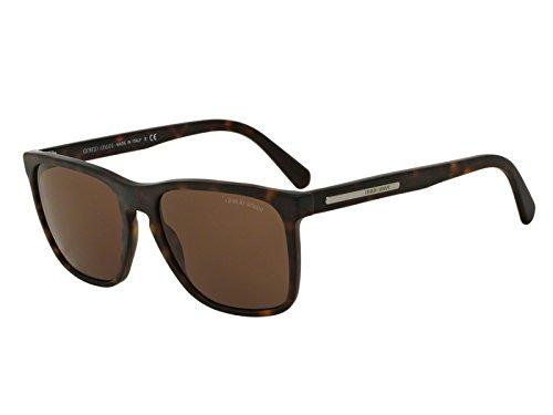 73 Acetate Sunglasses - 2