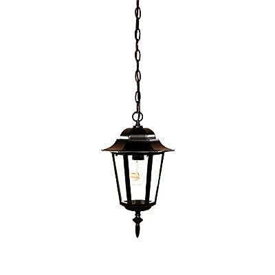 Acclaim 6116BK Camelot Collection 1-Light Outdoor Light Fixture Hanging Lantern, Matte Black